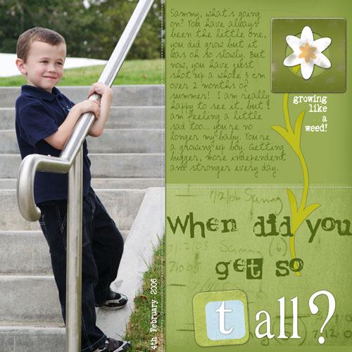 Tall-AO-CT