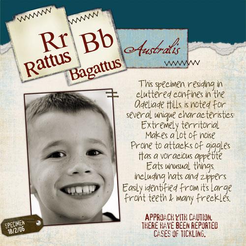 Rattus-Bagattus