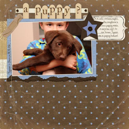 A-puppy-SN-CT