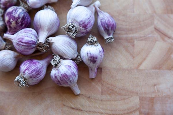 Garlic, first harvest.
