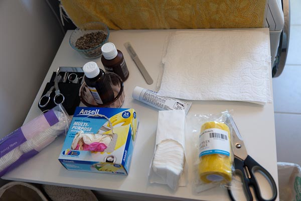 Important - cotton wipes, Betadine (Iodine), Savlon (Antiseptic cream with NO painkiller, Gauze, vetwraps. Scalpel, small scissors, tweezers. Epson salts for soaking, lots of gloves and paper towels for keeping clean.